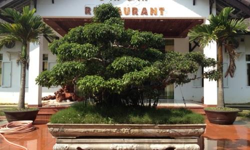 Nhà hàng An An – Bãi biển Thuận An