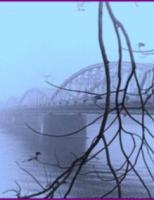 Ngắm xứ Huế đẹp mơ màng trong sương mù