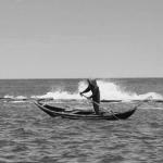 Khách thú nước non nơi hải khẩu