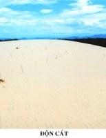Nhớ cát