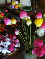 Làng hoa giấy Thanh Tiên và mùa xuân mơ ước