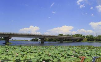 Cầu qua sông
