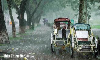 Đoàn tụ với mưa Huế