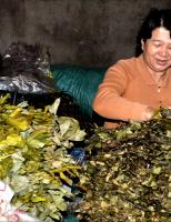 Chợ lá Dạ Lê