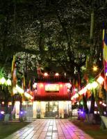 Cố đô Huế lung linh mùa Phật đản