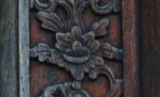 Hoa cúc ngỡ ngàng trên di tích Huế