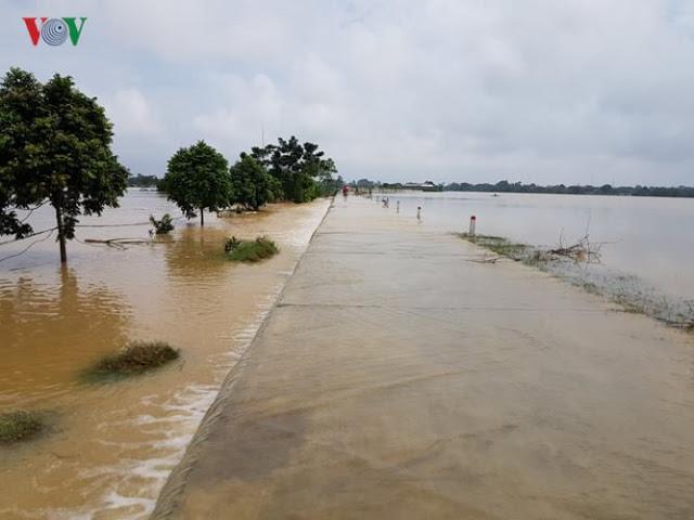 Cánh đồng mùa lụt
