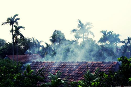 Mùi khói