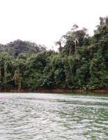 Lên thượng nguồn sông Hương ngắm non xanh nước biếc