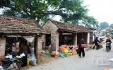 Chợ nhỏ quê tôi