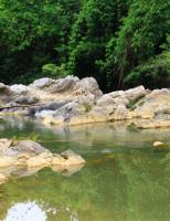Mát dịu suối Khe Đầy hòa trong núi rừng xanh thẳm