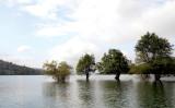 Hồ nước của tuổi thơ