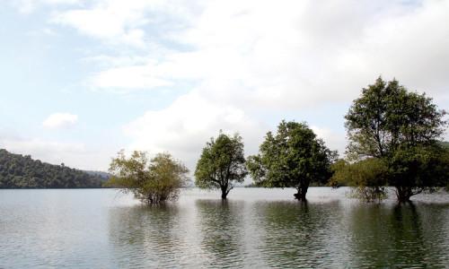 """<h2><a href=""""http://vanhoahue.net/2018/07/ho-nuoc-cua-tuoi-tho/"""">Hồ nước của tuổi thơ</a></h2>Ở quê tôi hầu như mỗi xóm đều có một cái hồ nước ở trên đầu xóm, hồ xóm Kế, xóm Đình, xóm Mung... Hồ được đào sát chân độn"""