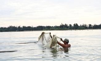 Độc đáo nghề săn cá tiến vua