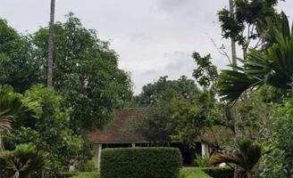 Vườn thơm xứ Huế