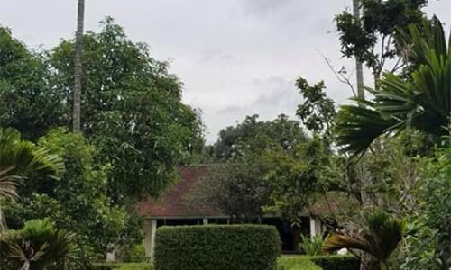 """<h2><a href=""""http://vanhoahue.net/2018/10/vuon-thom-xu-hue/"""">Vườn thơm xứ Huế</a></h2>   Huế là một thành phố không rộng nhưng lại có những khu nhà vườn mênh mang xanh hoa trái. Đó là không gian sống mà bạn tôi một người Sài"""