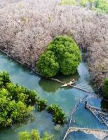 Lạ lùng Rú Chá mùa lá rụng