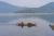 Mùa hàu ở đầm Lập An