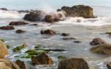 Việt Kiều Mỹ lặn lội miền Trung tìm bằng được bãi biển sạch không một cọng rác