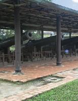 Số phận của những khẩu thần công thời Nguyễn