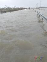 Bão lụt tràn về